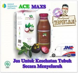 kemasan-baru-ace-maxs_001-23-300x279