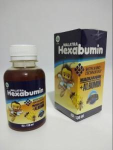 Madu_Hexabumin_Bukan_Vitabumin.png