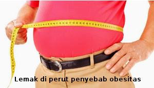 lemak obes